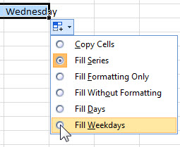 Excel fill handle options